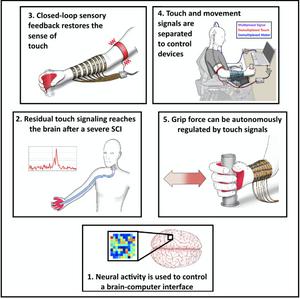 Visualisatie hand, electroden, band bovenarm en vastpakken voorwerp